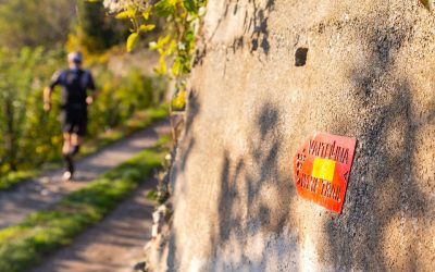 Valtellina Wine Trail 2019